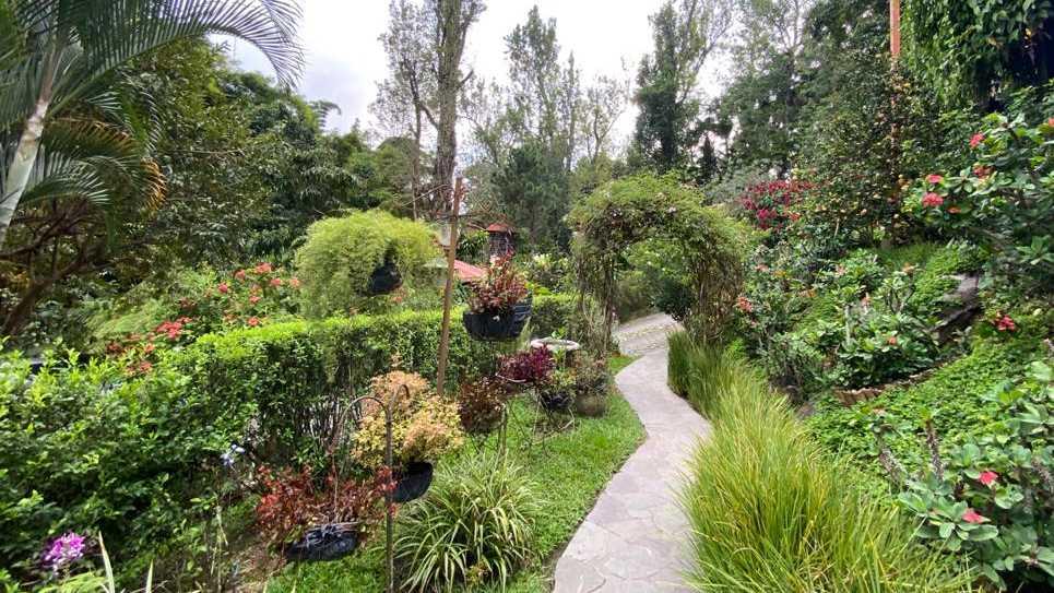 Tu Jardín Secreto, un tesoro natural en la capital salvadoreña